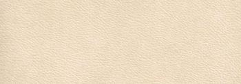 ΔΕΡΜΑΤΙΝΗ  4935